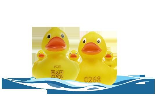 Badeenten als Rennenten mit Startnummer für Entenrennen